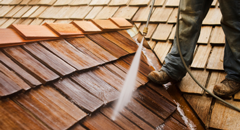 Cleaning shake roof